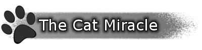 [RPG Maker MV] The Cat Miracle (Versión 0.1.4 a 24-10-2018) 1537476450-633381-titulo